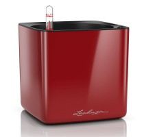 Lechuza Cube Premium 16 Scarlet komplet