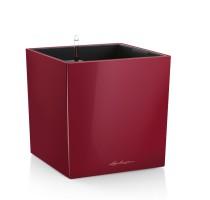 Lechuza Cube Premium 40 Scarlet komplet