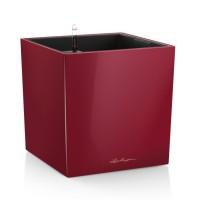 Lechuza Cube Premium 50 Scarlet komplet
