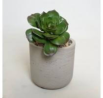 Umělá Echeveria zelená 15cm