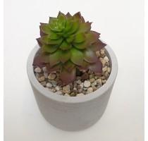 Umělá Echeveria zelené 10cm