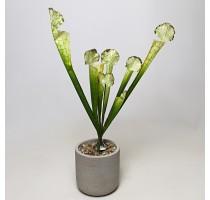 Umělá Sarracenia světle zelená 45cm