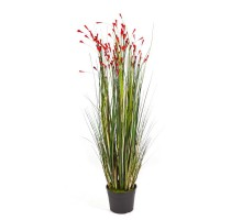 Grass Coral Red 120cm