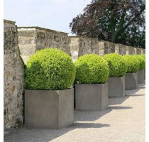 D-lite Cube L Natural Concrete 50x50x50cm
