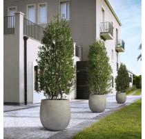 D-lite vajíčko L Natural Concrete 55x55cm