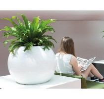 Globe Premium White 60x45cm