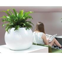Globe Premium White 40x32cm