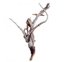 Dekorativní dřevěná větev Raw 75cm