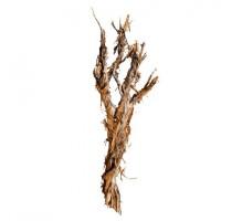 Dekorativní dřevěná větev Raw 170cm