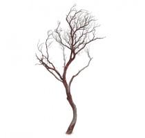 Manzanita brown 180cm