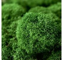 Stabilizovaný mech Island přirozeně zelený 2kg-0,25m2