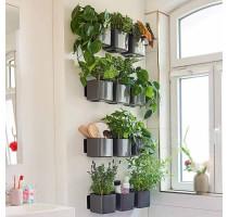 Lechuza zelená stěna premium antracit komplet