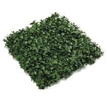 Umělá zelená stěna Hedera 50x50cm