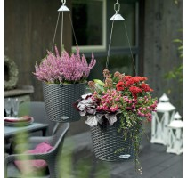 Lechuza Nido Cottage Granit komplet