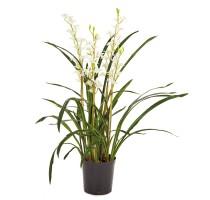 Umělá Orchidej Cymbidium bílá 95cm