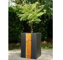 Wagner Forest Antracit 50x50x75cm