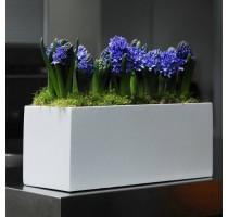 Fiberstone truhlík White lesklý 30x15x16cm