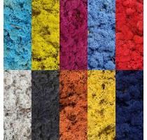 Vzorník barevných stabilizovaných mechů