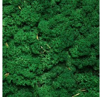 Stabilizovaný Norský mech Grass Green 500g
