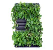 Zelená stěna LivePanel Pack 2x3 - 87x157cm
