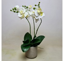 Umělá Orchidej bílá 45cm