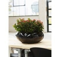 Moda Bowl Black 55x22cm