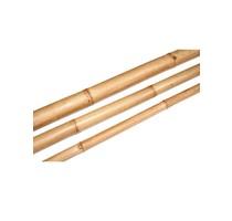 Dekorativní Bamboo 6-8cm Natural 210cm